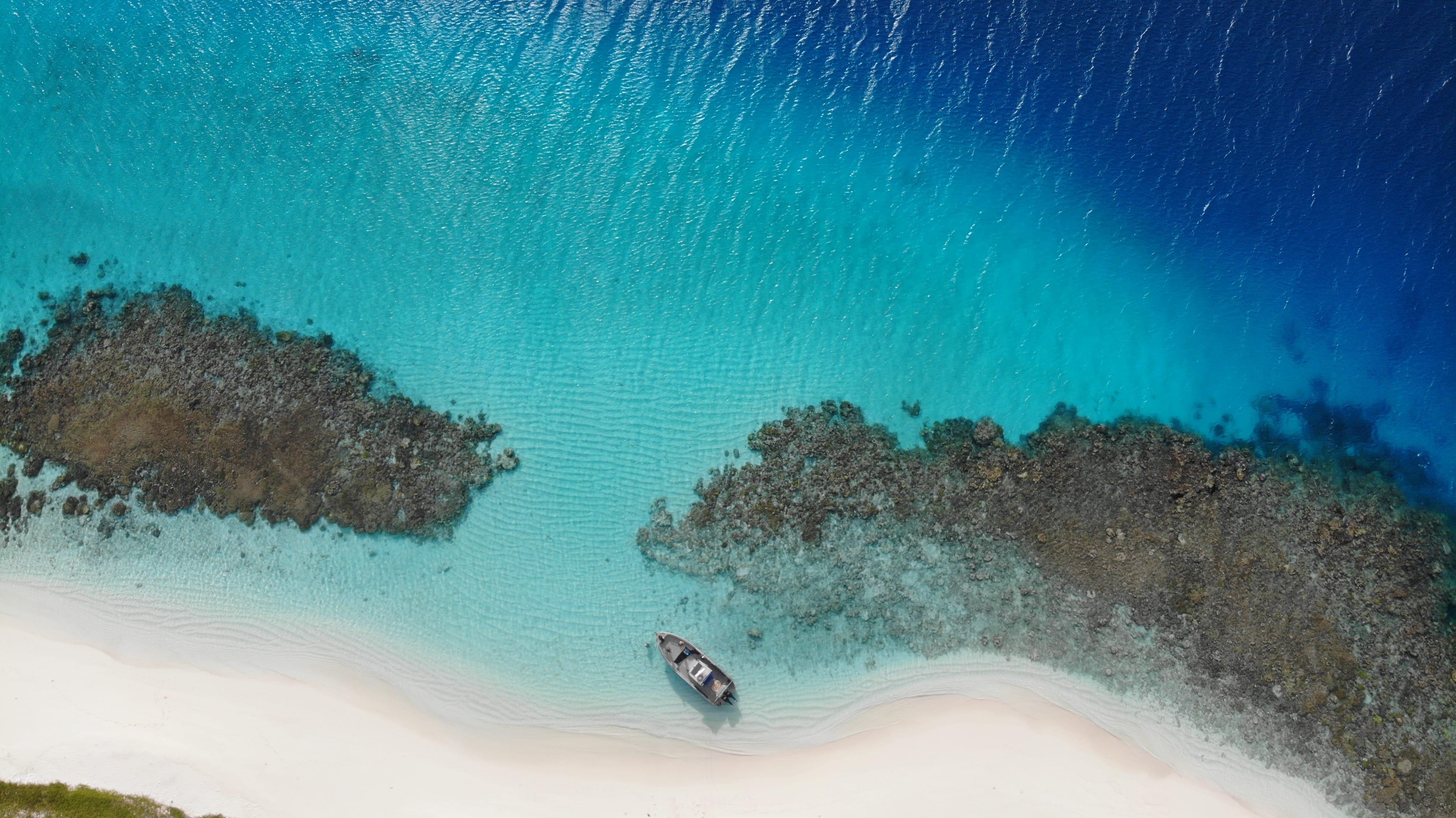 LONG ISLAND FISHING – LE PLAISIR DE LA PECHE DANS LE GRAND SUD – NC – SKYVIEW