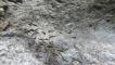 2018-12-06 Ile des pins Piscine naturelle GADJI (101)